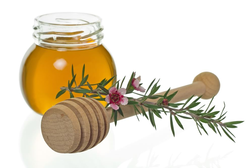 Fight Infection With Manuka Honey